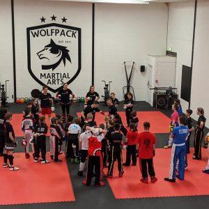 JIGSAW MATS 20mm Premium martial arts mats,  High Density Red/Black superb quality